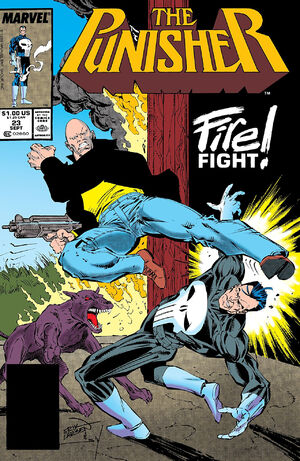 Punisher Vol 2 23