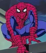 Peter Parker (Earth-92131) as Spider-Man from Spider-Man The Animated Series Season 2 3