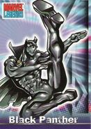 T'Challa (Earth-616) from Marvel Legends (Trading Cards) 0001