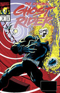 Original Ghost Rider Vol 1 14