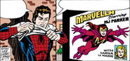 Spider-Man Newspaper Strips Vol 1 2006