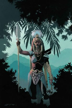 Black Panther Vol 6 8 Ribic Connecting Variant D Textless