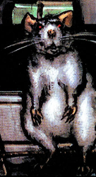 File:Buster (Rat) (Earth-616) from Black Panther Vol 3 1 001.png