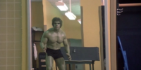 The Incredible Hulk (TV series) Season 2 8