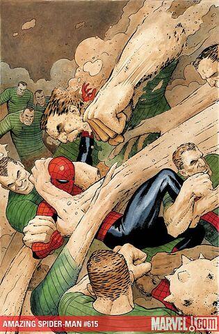 File:Amazing Spider-Man Vol 1 616 Solicit.jpg