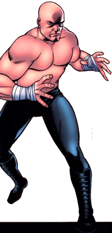 File:Joseph Hogan (Earth-616) from Official Handbook of the Marvel Universe Spider-Man 2005 Vol 1 1.png