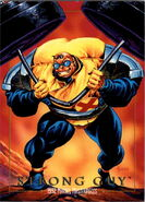 Guido Carosella (Earth-616) from Marvel Masterpieces Trading Cards 1992 0001