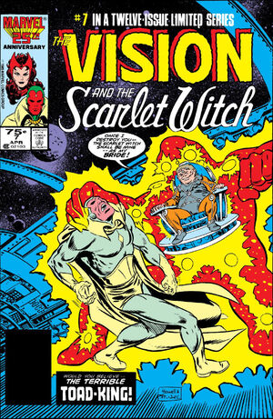 Vision and the Scarlet Witch Vol 2 7