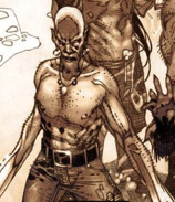 File:Bayonet (Earth-616) from Wolverine Vol 2 313 001.png