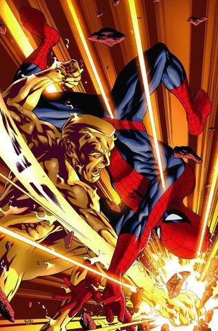 File:Amazing Spider-Man Vol 1 582 Textless.jpg