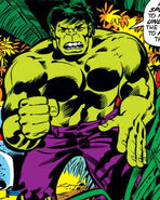 Bruce Banner (Earth-616) from Incredible Hulk Vol 1 156 0001