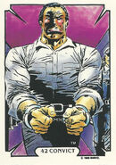 Frank Castle (Earth-616) from Mike Zeck (Trading Cards) 0005