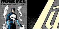 Punisher Vol 2 15