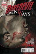 Daredevil End of Days Vol 1 2