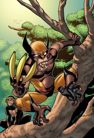 File:Wolverine First Class Vol 1 6 Textless Variant.jpg