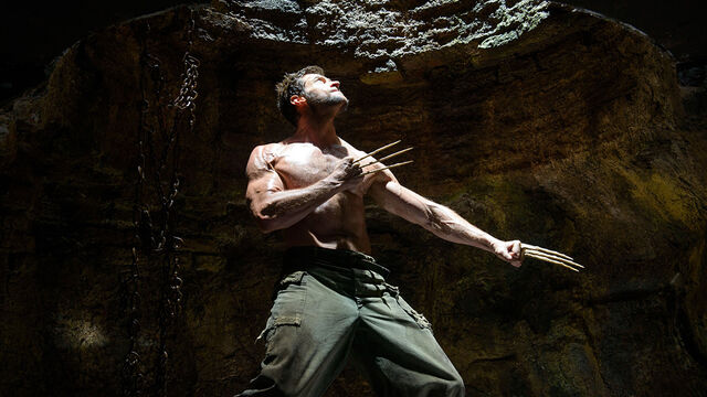 File:The Wolverine - pit.jpg