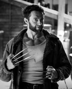 File:Thewolverinechains.jpg