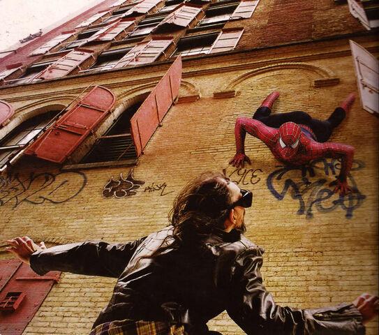 File:Spider-theif.jpg