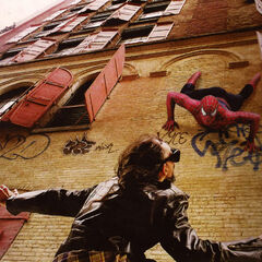 Spider-Man catching a theif.