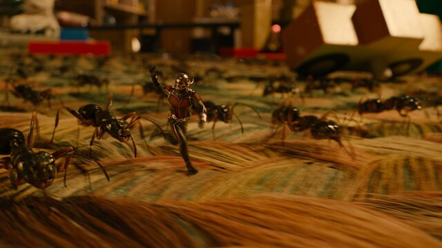 File:Ant-Man and Ants 03.jpg