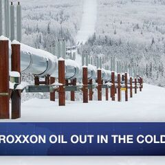 Shares of Roxxon Oil Corporation tumble after revelation of illegal drilling in Arctic. #WHIH