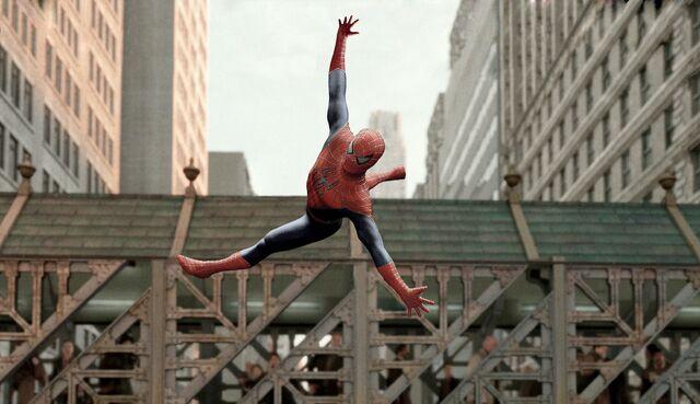 File:Spider-aerobics.jpg