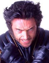 File:Wolverine1.jpg