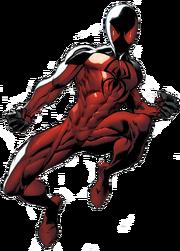 Kaine Profile
