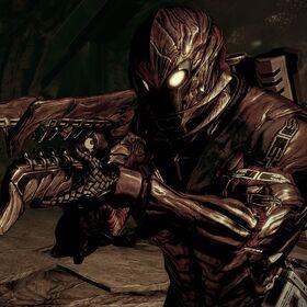 Collector Armor