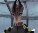 Comandante Rentola