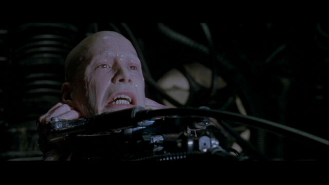 File:The Matrix 237.jpg