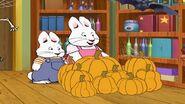 Max Ruby perfect pumpkin