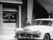 Fleur de lis beauty shop