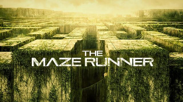 File:The-maze-runner-wallpaper.jpg