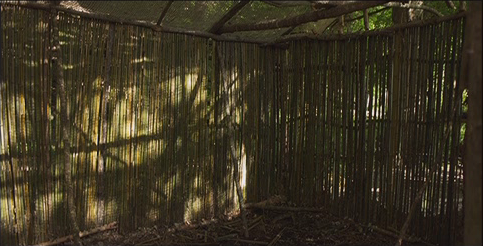 File:Glade7.png