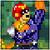 SSF Captain Falcon icon