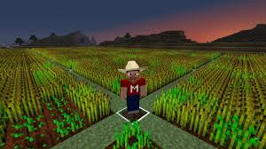 Giantwheatfarmminecraft