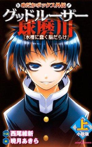 File:Light Novel 3.jpg