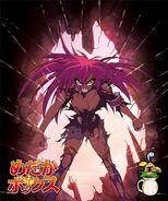 DVD Volume 6