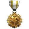 File:Special Ops Medal.png