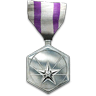 Campaign Commendation Medal