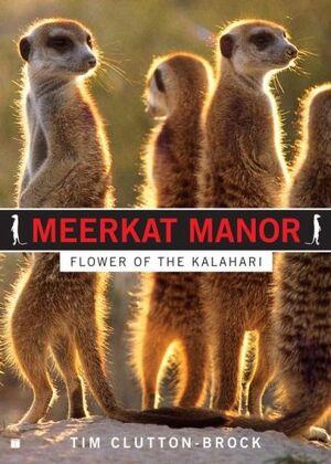 Flower of the Kalahari Book