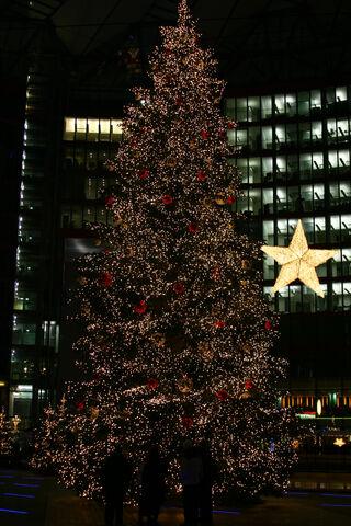 Datei:Weihnachtsbaum.JPG