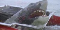 Jaws Jr.