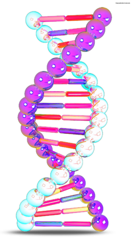 File:Color-DNA.png