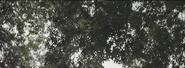 Screenshot (99)