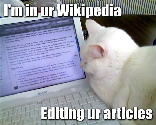 File:Wikipedia-lolcat.jpg