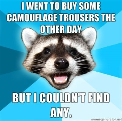 File:I-went-to-buy-some-camouflage-trousers-the-other-day-but-I-couldnt-find-any.jpg