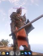 Valaran Commander (boss)