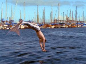 Cody Diving